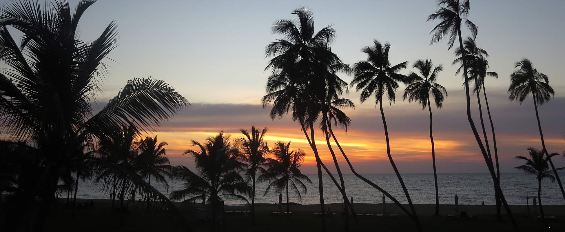 Chilaw Sri Lanka  City new picture : Sri Lanka Chilaw an der Westküste