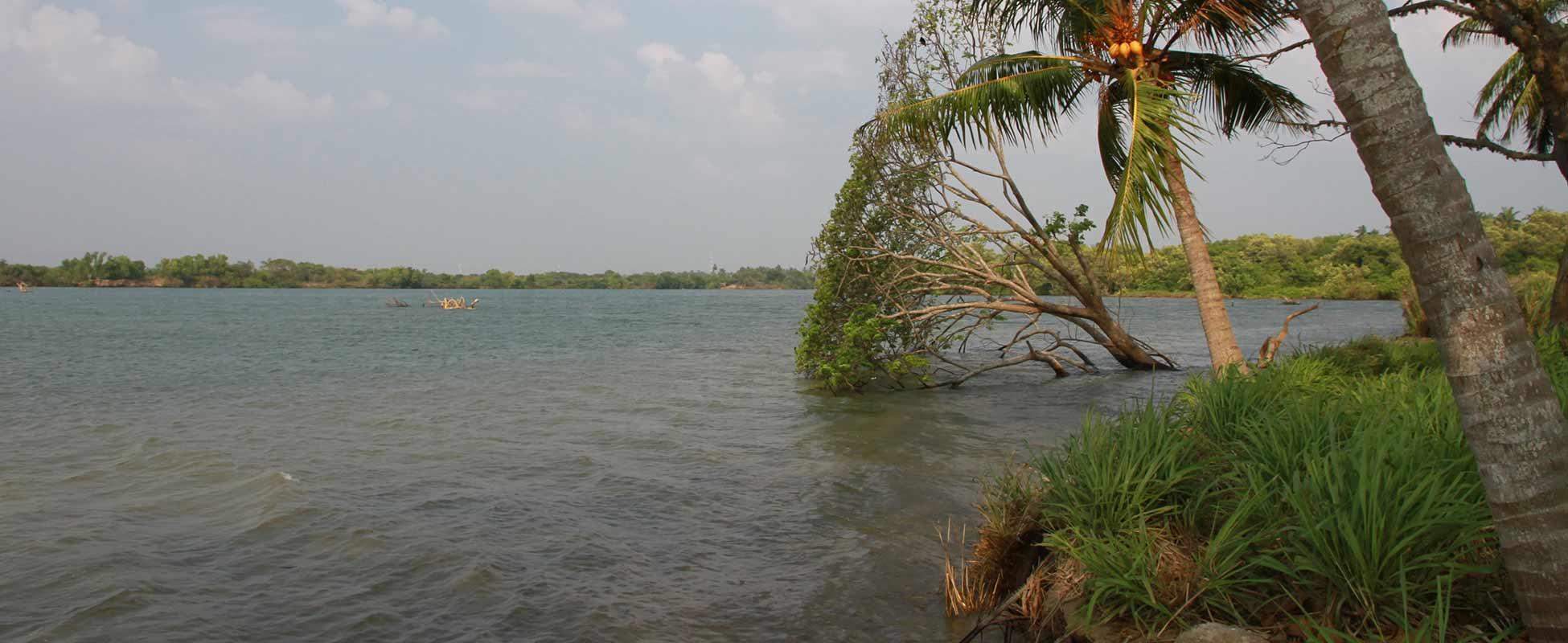 Chilaw Sri Lanka  city images : Sri Lanka   Bootsfahrt auf der Lagune von Chilaw ≈